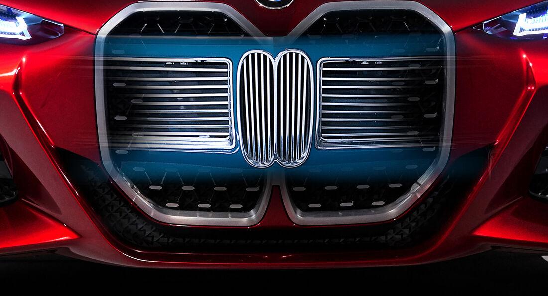 BMW Niere Aufmacher