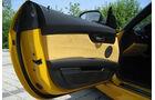 BMW Z4 Design Pure Impulse, Innenraum