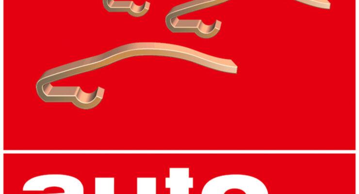 Bestenwahl, Logo