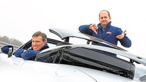 Blechdach, Ansichtssache, Peter Wolkenstein, Stefan Cerchez