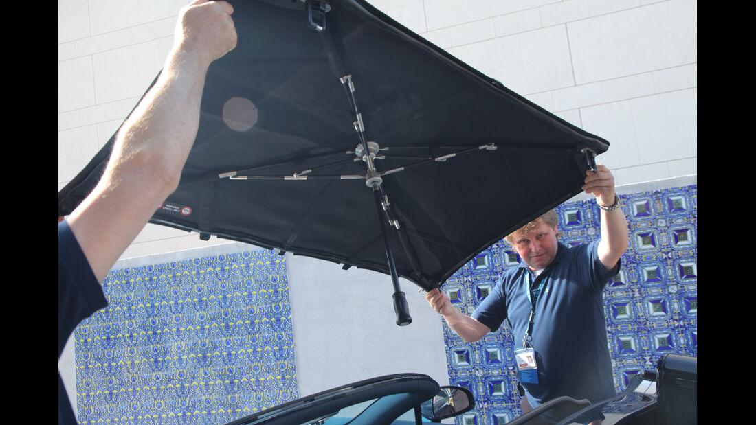 Bugatti Veyron 16.4 Grand Sport Vitesse, Dach, abnehmen