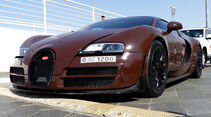 Bugatti Veyron - F1 Abu Dhabi 2014 - Carspotting