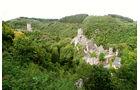 Burgen in der Eigel
