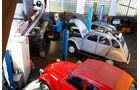 Citroen 2CV, mehrere Fahrzeuge, Werkstatt