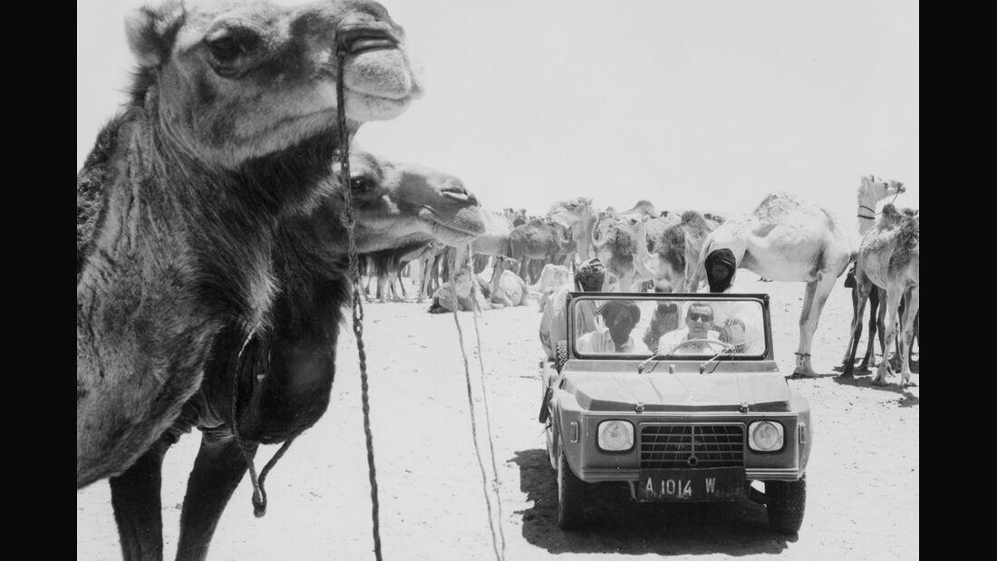 Citroen Mehari Rallye