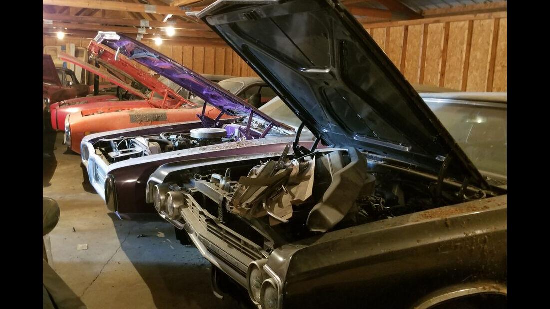 Coyote Johnson Muscle-Car-Sammlung