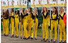 DTM-Girls - Hockenheim - 2015
