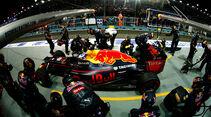 Daniel Ricciardo - GP Singapur 2016
