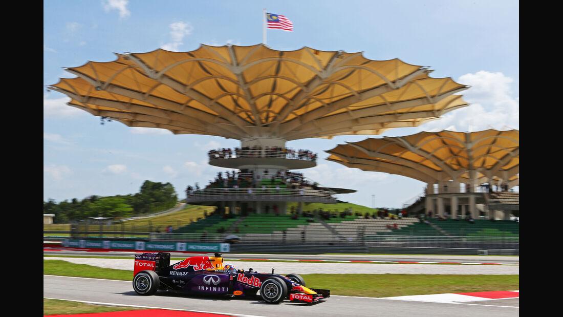 Daniel Ricciardo - Red Bull - Formel 1 - GP Malaysia - 28. März 2015