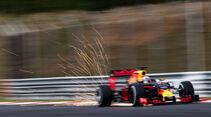 Daniel Ricciardo - Red Bull - Formel 1 - GP Malaysia - Qualifying - 1. Oktober 2016