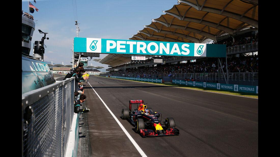 Daniel Ricciaro - Red Bull - GP Malaysia 2016 - Sepang