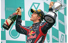 Das Geheimnis von Vettels Weltmeistermotor