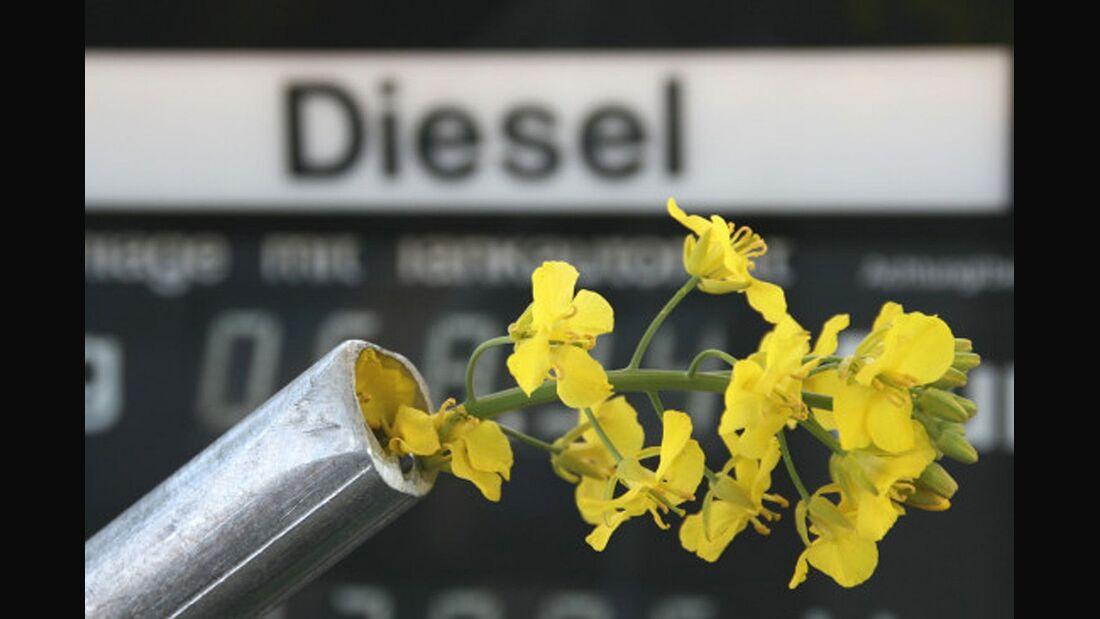 Der Streit um die Biosprit-Förderung wurde vertagt.