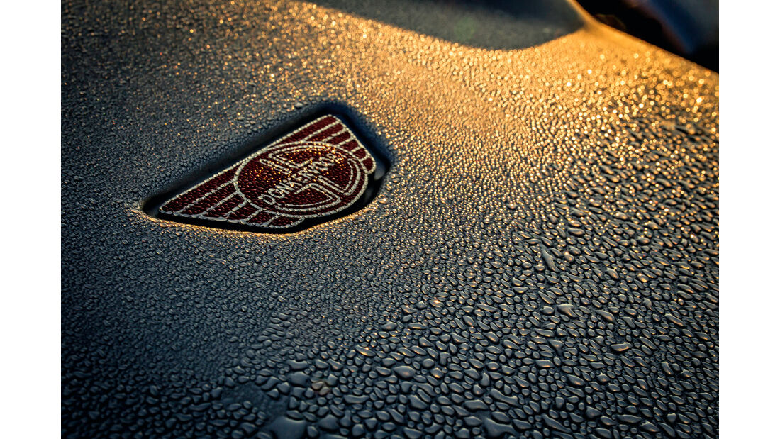Donkervoort D8 GTO, Emblem