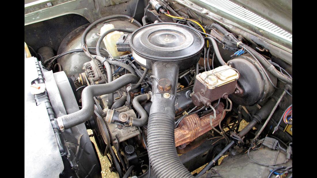Einkaufs-Tour, Dodge W 250, Army-Pick-up, Motor