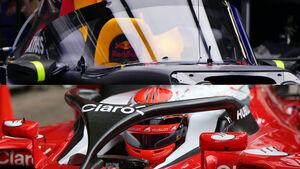 F1 Cockpitschutz - Canopy - Halo
