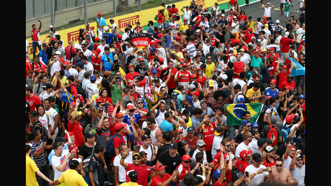 Fans - Formel 1 - GP Brasilien- 15. November 2015