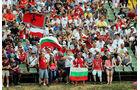Fans - Formel 1 - GP Ungarn - 27. Juli 2014