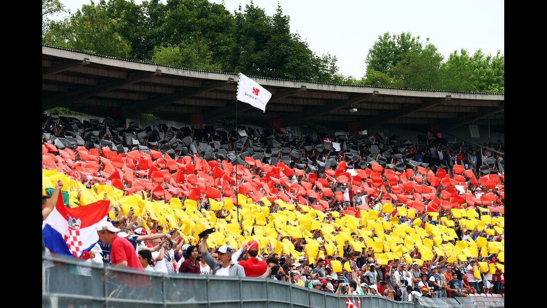 Fans - GP Deutschland 2014