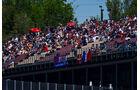 Fans - GP Spanien 2016 - Qualifying - Samstag - 14.5.2016
