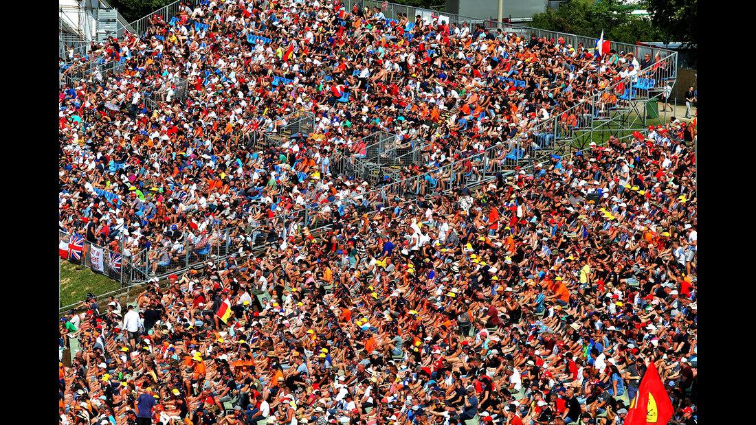 Fans - GP Ungarn 2019 - Budapest - Qualifying