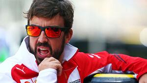 Fernando Alonso - Ferrari - Formel 1 - GP Brasilien - 6. November 2014