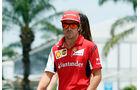 Fernando Alonso - Formel 1 - 2014