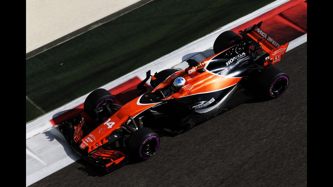 Fernando Alonso - GP Abu Dhabi 2017
