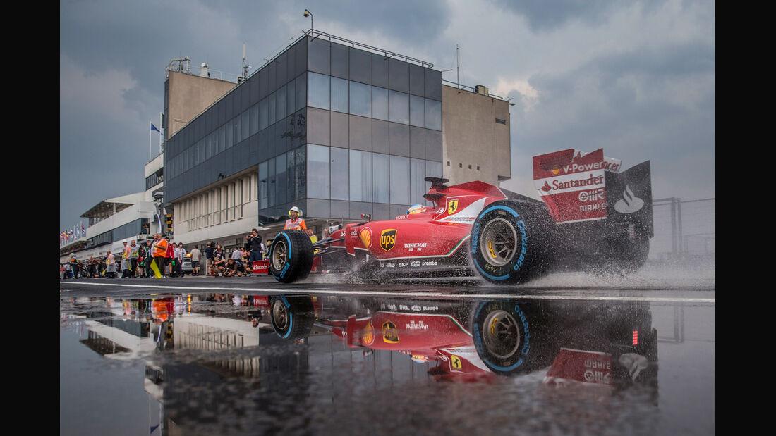 Fernando Alonso - GP Ungarn 2014 - Danis Bilderkiste