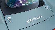 Ferrari 458 Challenge, Detail, Typenbezeichnung