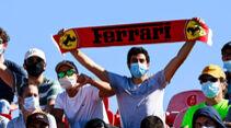 Ferrari-Fans - Formel 1 - GP Portugal - Portimao - 24. Oktober 2020