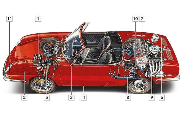 Fiat 850 Spider, Schwachstellen, Kaufberatung, Igelbild