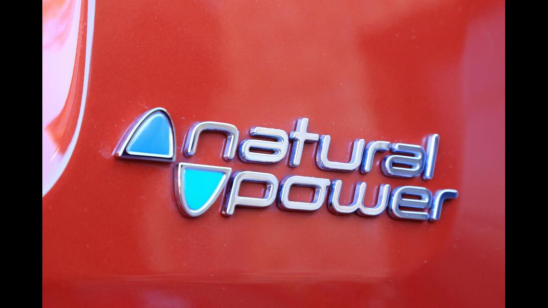 Fiat Panda 0.9 8V Natural Power Lounge, Typenbezeichnung