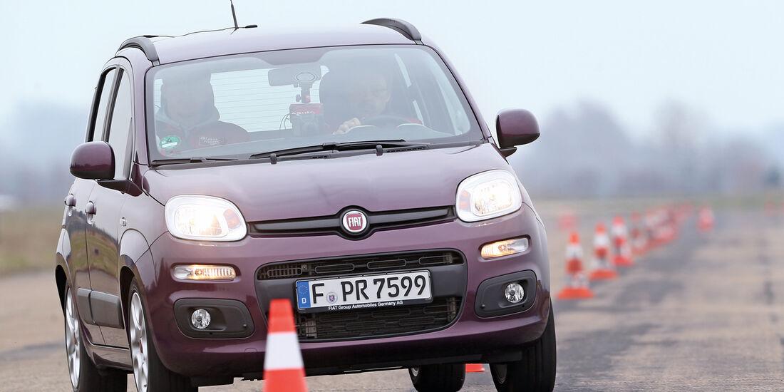 Fiat Panda, Frontansicht, Slalom