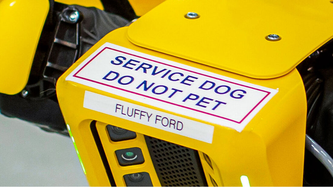 Fluffy Roborterhund Ford Boston Dynamics