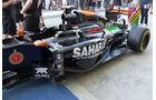 Force India - Formel 1 - GP Abu Dhabi - 20. November 2014