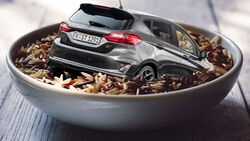 Ford Fiesta Reis Schüssel Wasser Feuchtigkeit Schaden