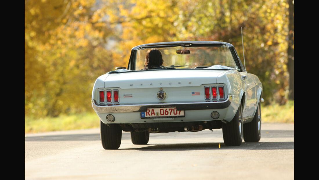 Ford Mustang 289 Convertible, Heck