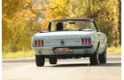Ford Mustang 289 Convertible, Heck