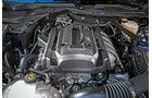 Ford Mustang 5.0 V8, Motor