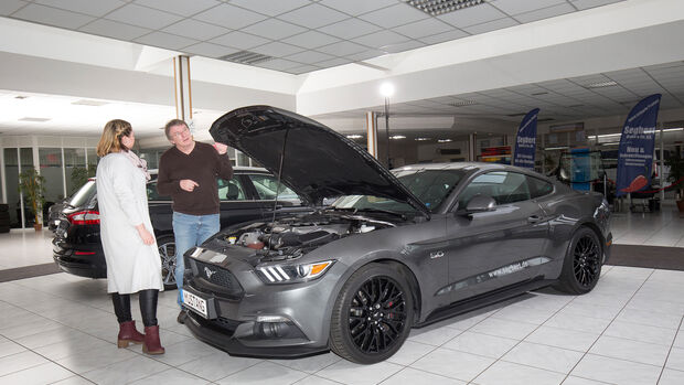 Ford Mustang GT Coupe?, Exterieur