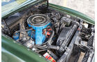 Ford Mustang V8 Cabrio, Motor