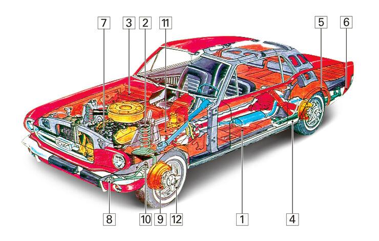 Ford Mustang V8, Schwachpunkte, Igelbild