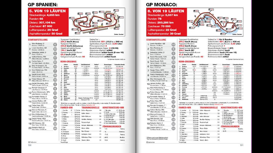 Formel 1-Buch - Jahr 2015 - Schmidt