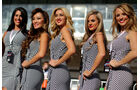 Formel 1-Girls - GP USA 2013