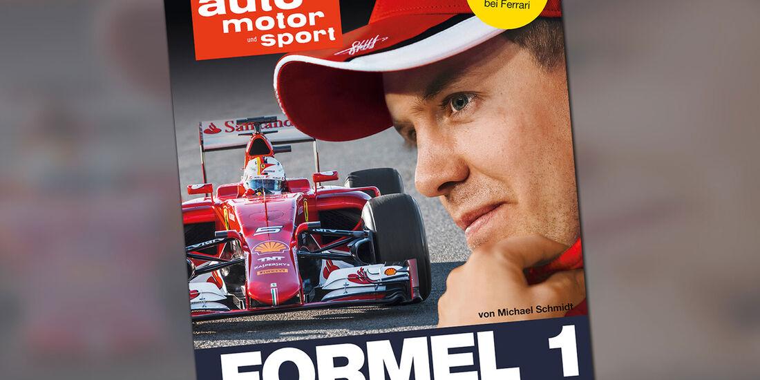 Formel 1 - Saison 2015 - Buch - Michael Schmidt