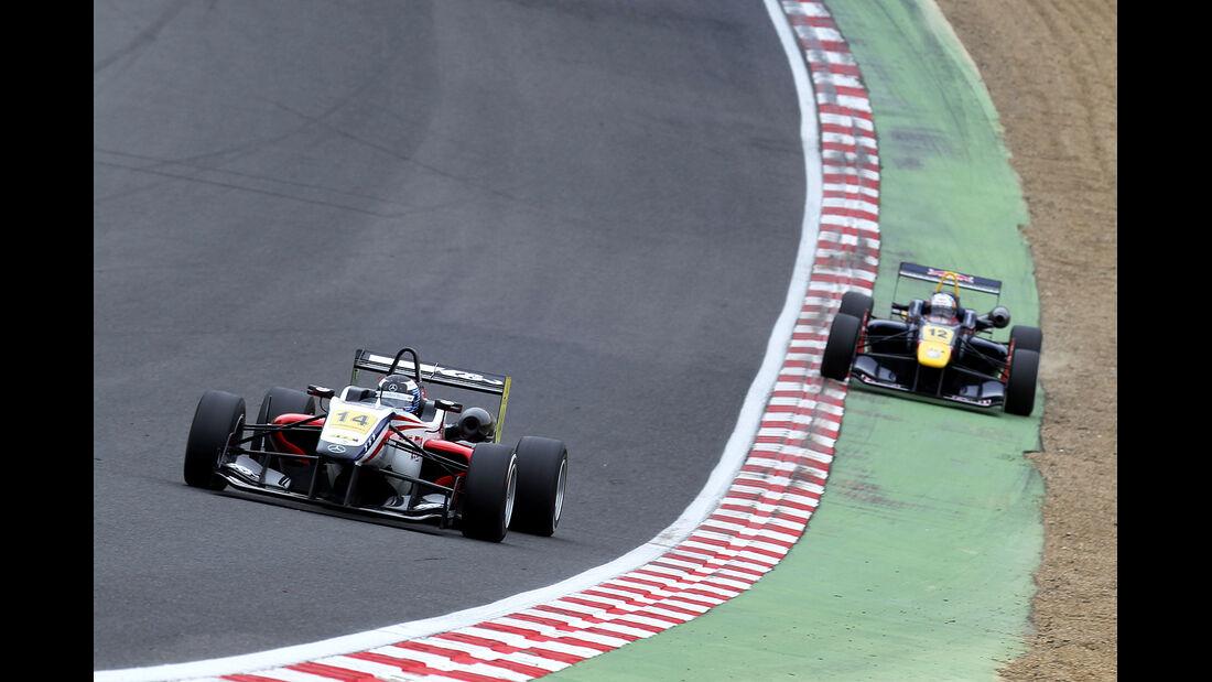 Formel 3 Brands Hatch 2012, Michael Lewis