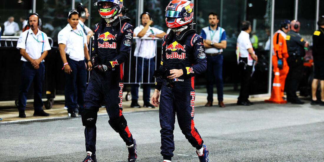 Gasly & Hartley - Toro Rosso - GP Abu Dhabi 2017