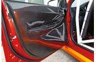 Gassner-Evo hg400R, Karbon-Türenverkleidung