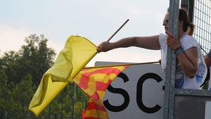 Gelbe Flaggen - Formel 1